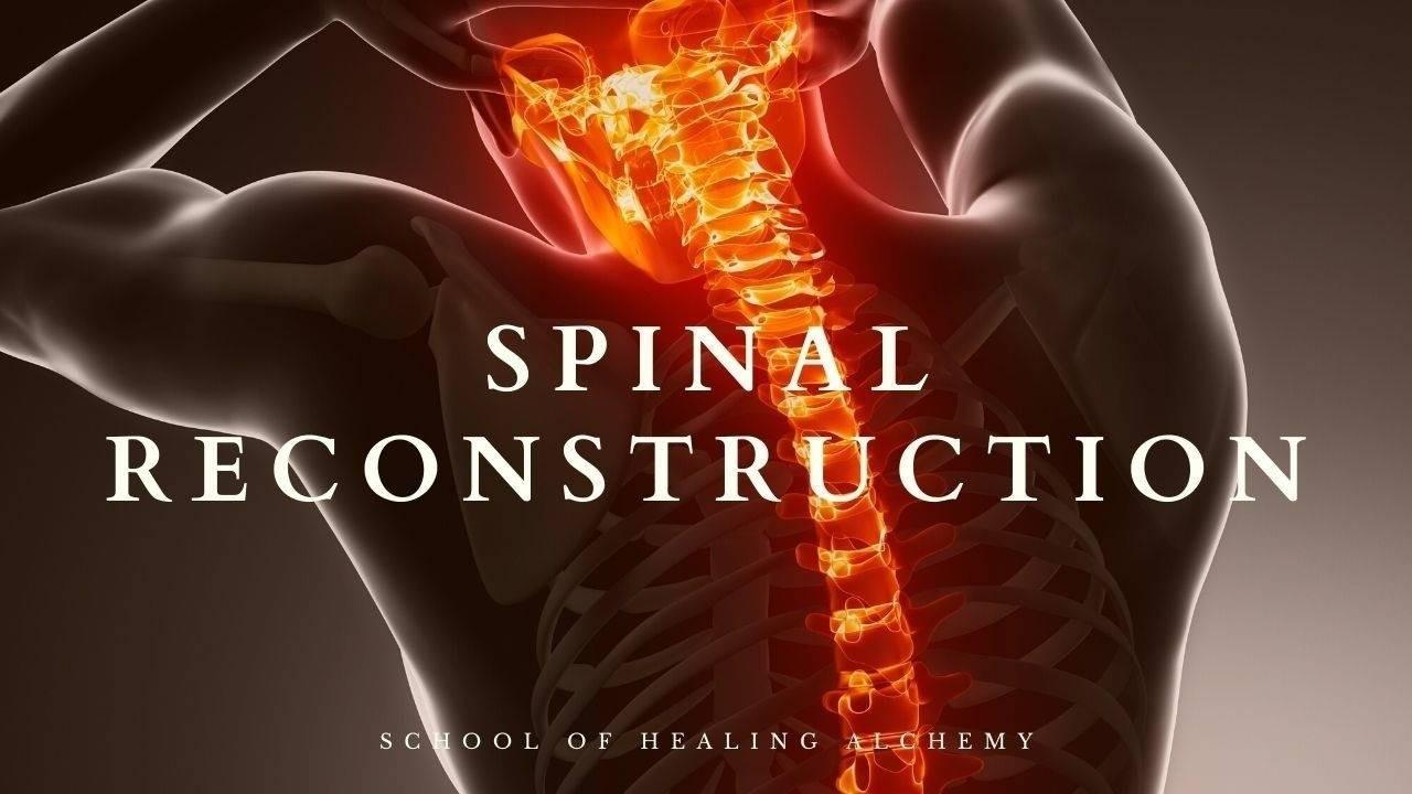 Healing the spine somatic trauma integration