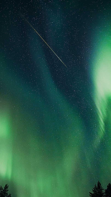Buttercup Meditation - aurora borealis
