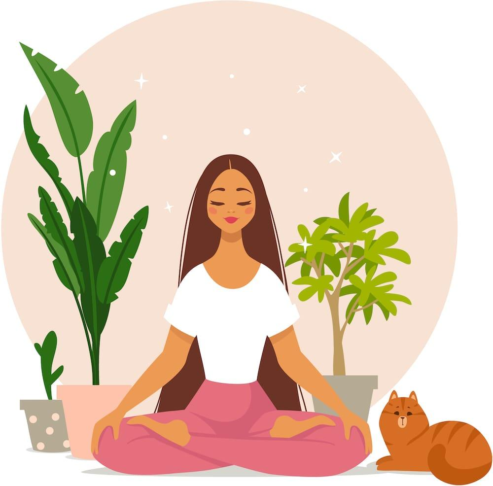 Illustration of a woman having a spiritual awakening experience. She's seated on the floor with eyes closed, beside houseplants and a cat.