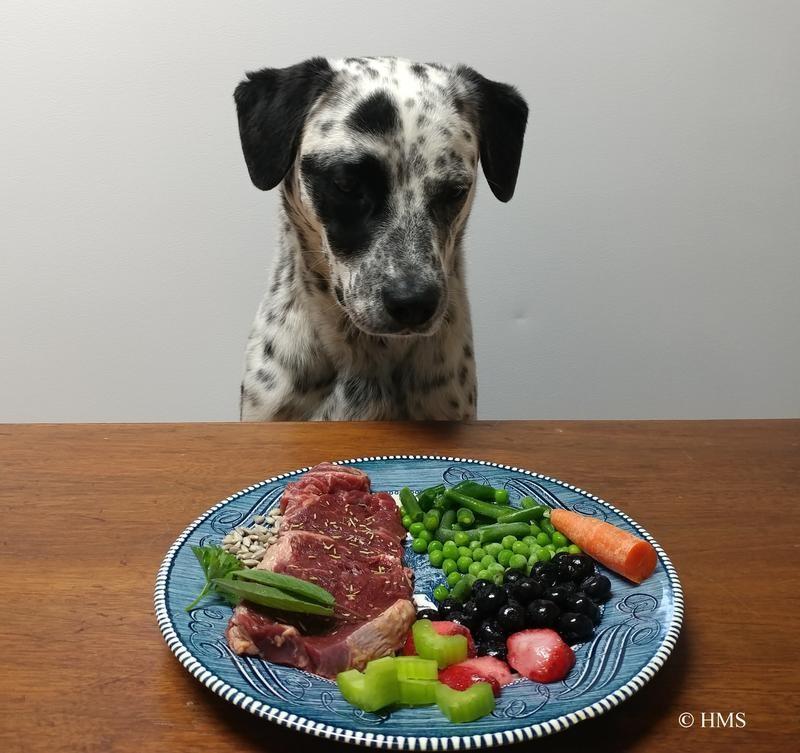 Natural Pet Nutrition © HMS