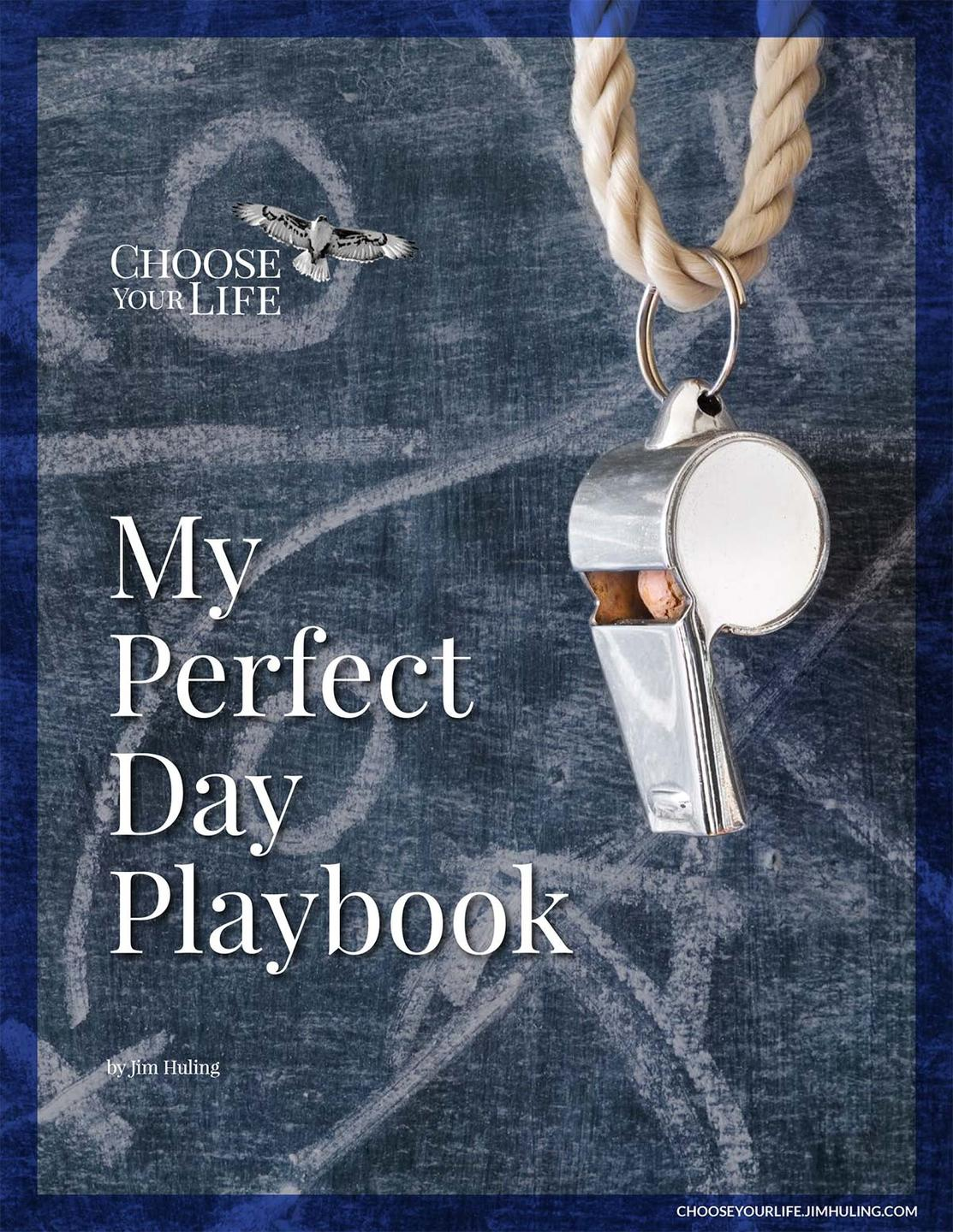 My Perfect Day Playbook