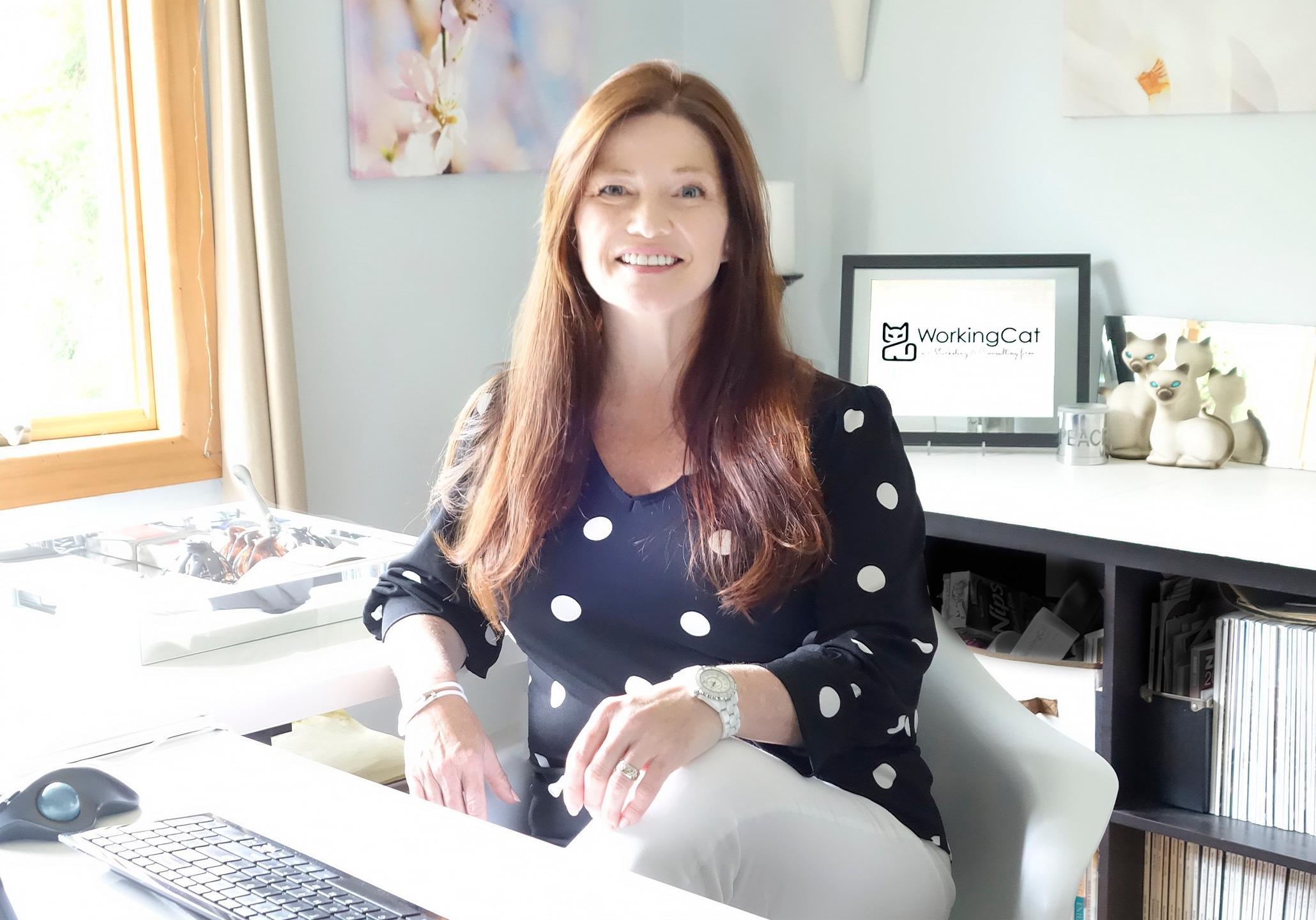 Laura J Nadler WorkingCat dental marketing