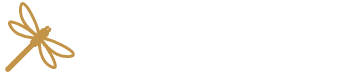 Annie Bauer Optimist | Strategist | Inspirer is a certified coach, and online business expert who teaches female digital entrepreneurs how to start or scale a successful online business and be a Cyber CEO