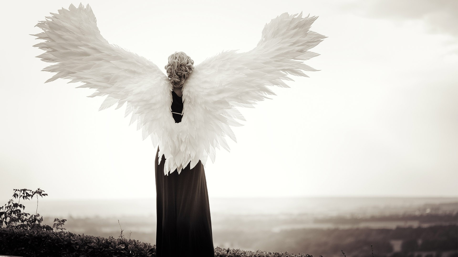 A person who looks like an angel with angel wings representing a Lightworker or Guardian.