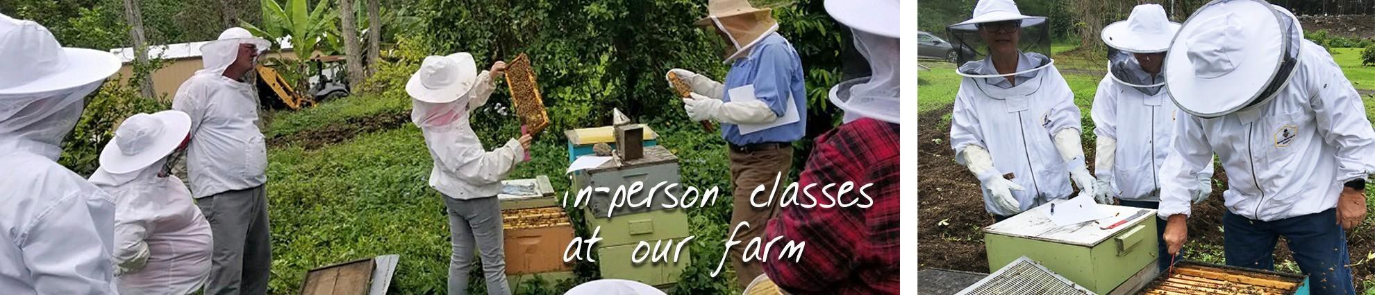 beekeeping class in hawaii