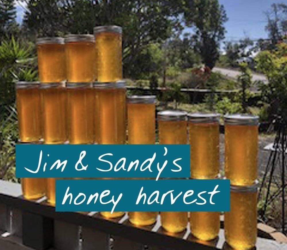 online beekeeping student's