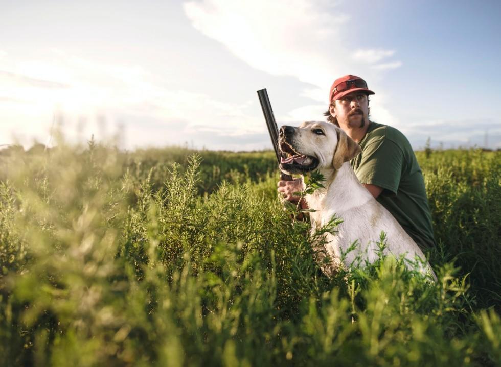 Gundog Training Problems and Solutions