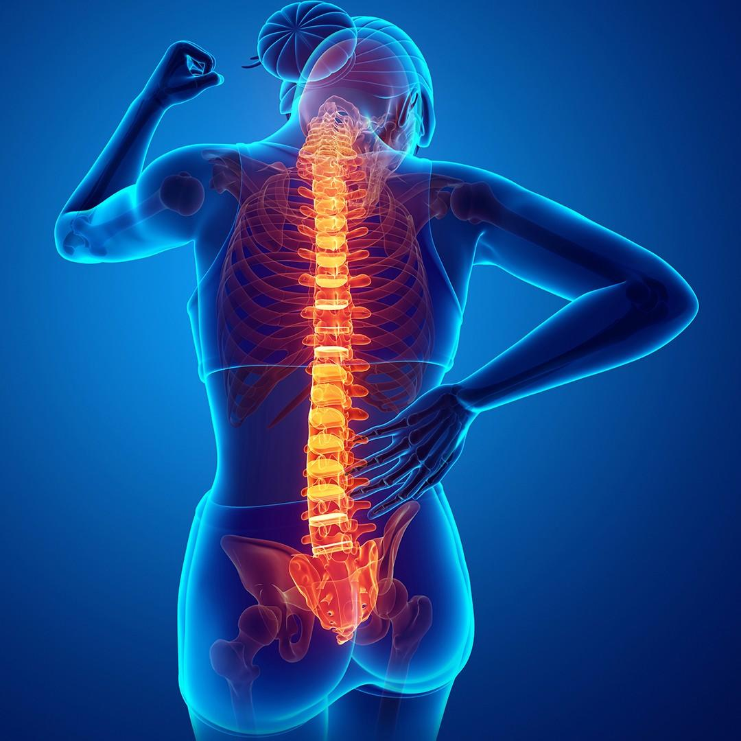 Chiropractic Care - Chiropractor  Mississauga Port Credit at pureBalance Wellness Cancer Care