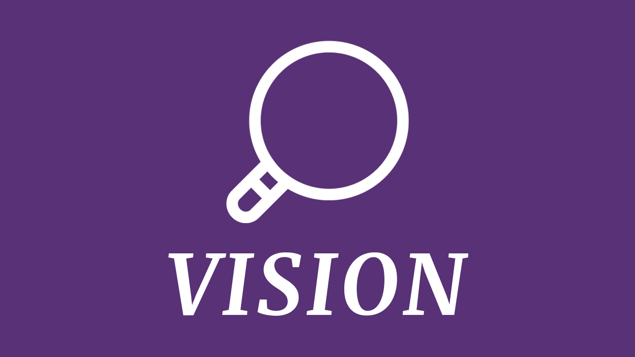 magnifying glass with the word vision