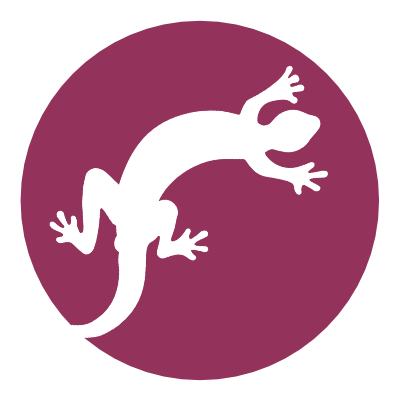 Movingness: The Gecko Series icon