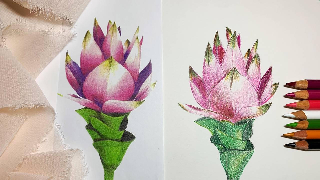 Color Application with Colored Pencils