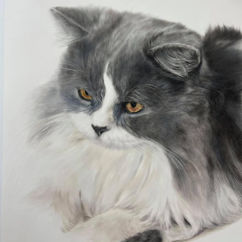 Commission A Portrait - Bonny Snowdon Fine Art