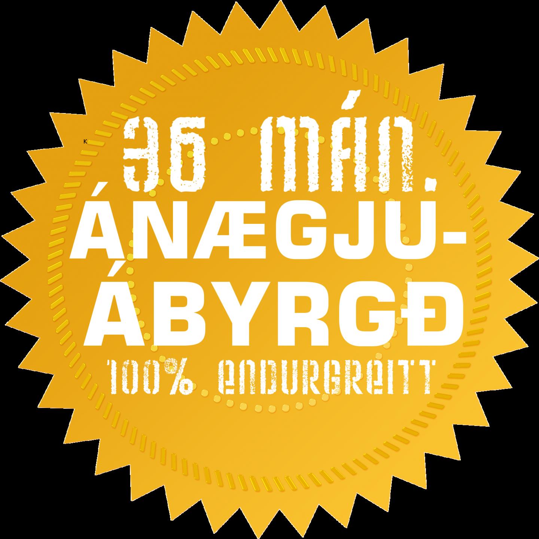 36 mánaða Ánægjuábyrgð Hraðlestrarskólans