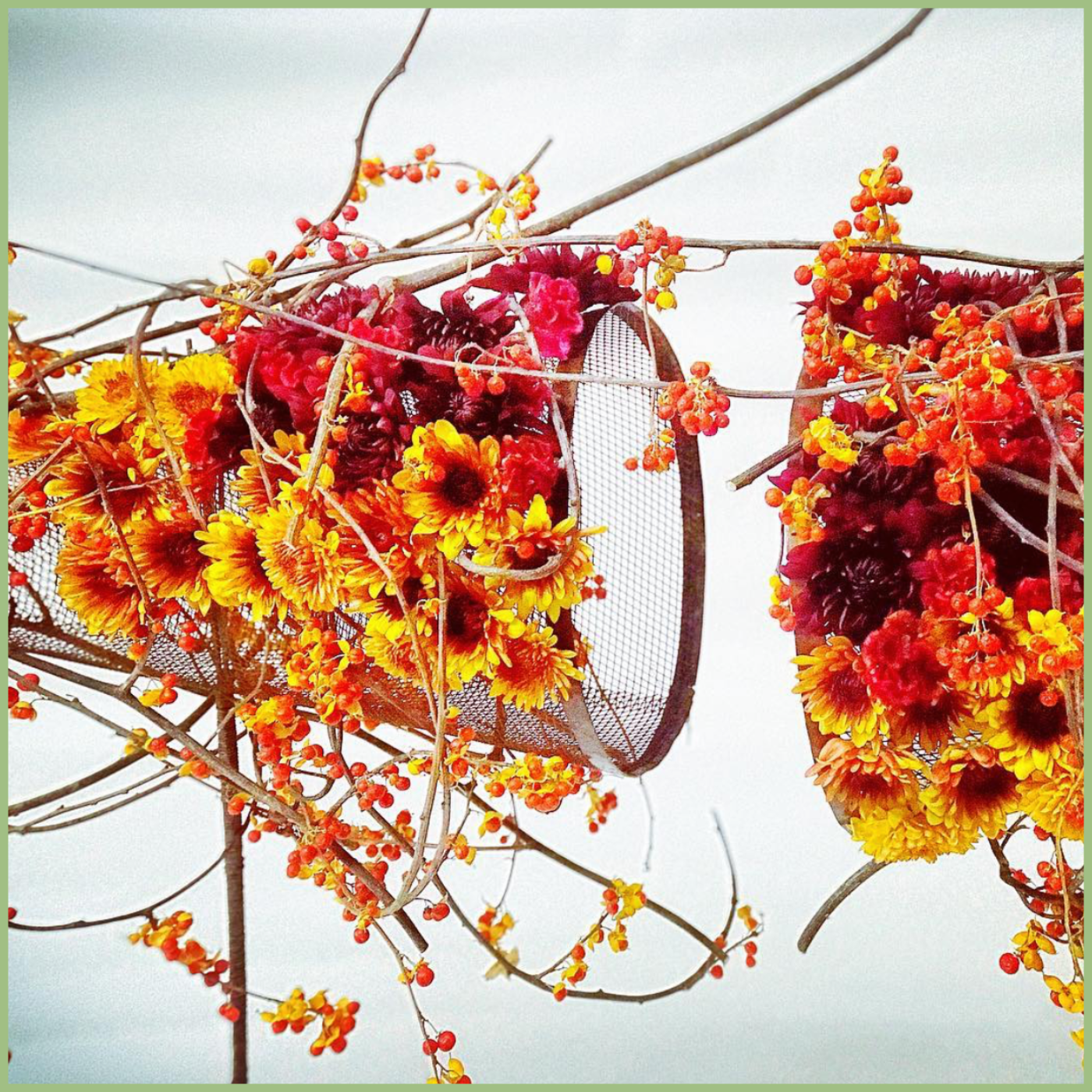 Orange,  yellow and red modern floral art, design