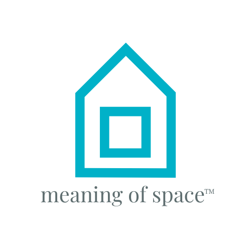 meaning of space logo
