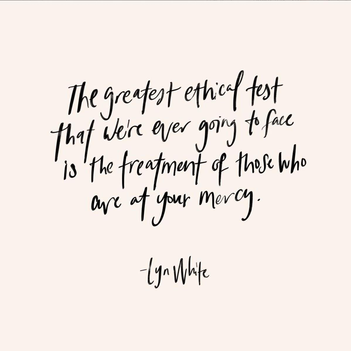 lyn white quote