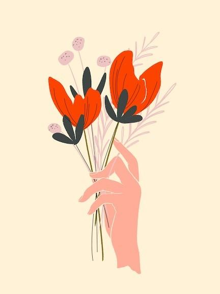 hand illustration flowers