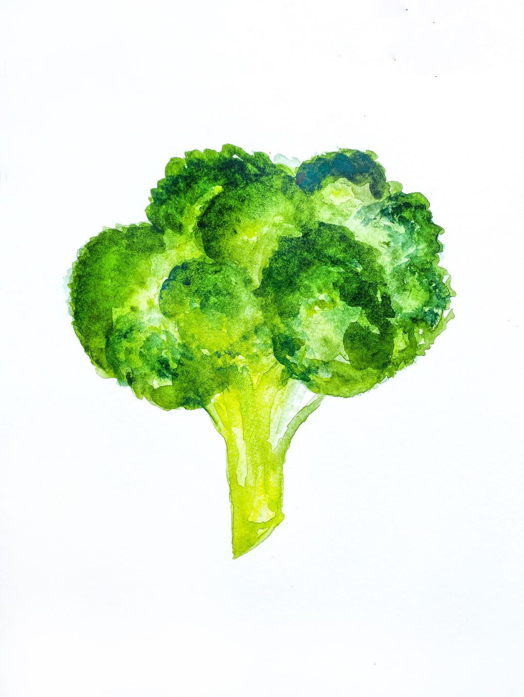 broccoli watercolor