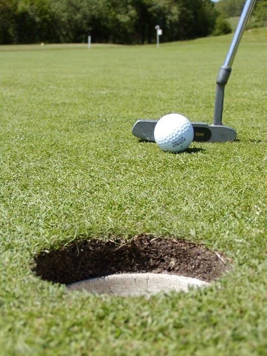 Golfari puttaamassa reikään