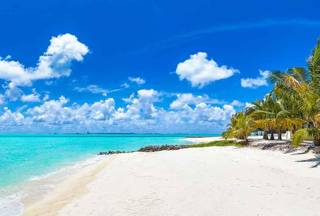 Travel to amazing destinations
