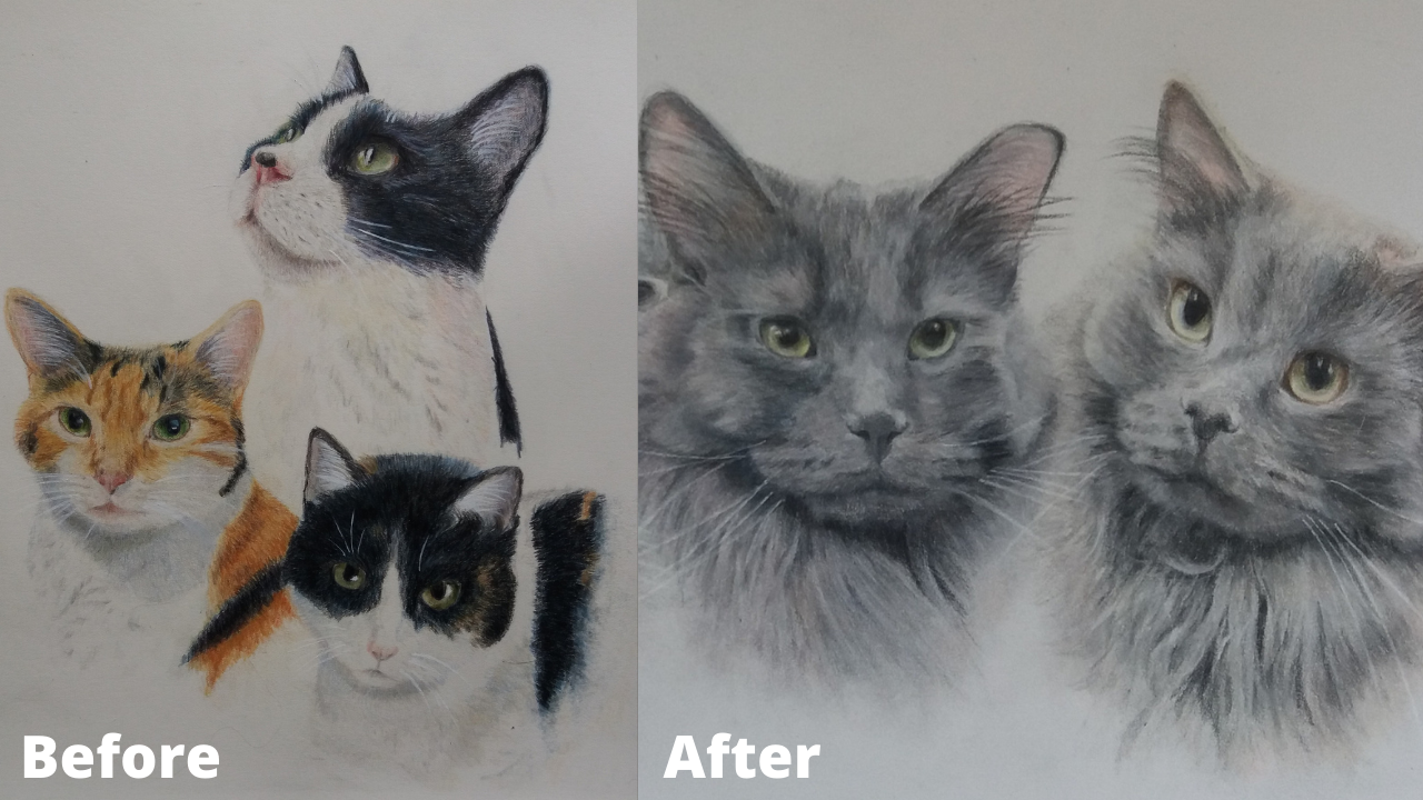 Judith Wysocki - Before and After - Patreon - Bonny Snowdon Fine Art