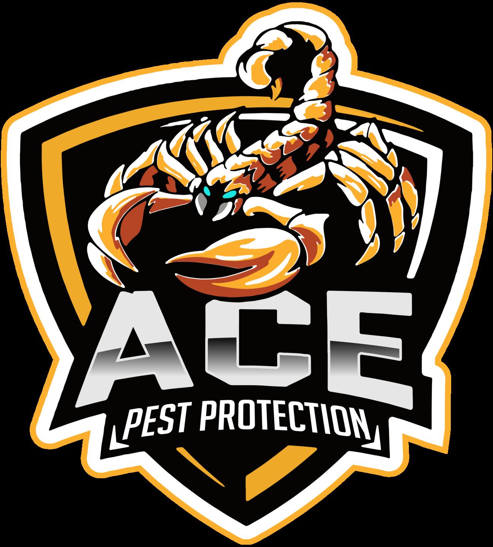 Pest Control | Ace Pest Protection