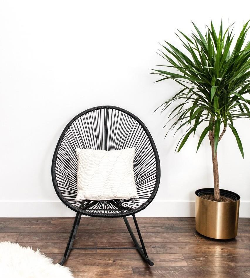 Stylish chair and potted plant used for home staging design