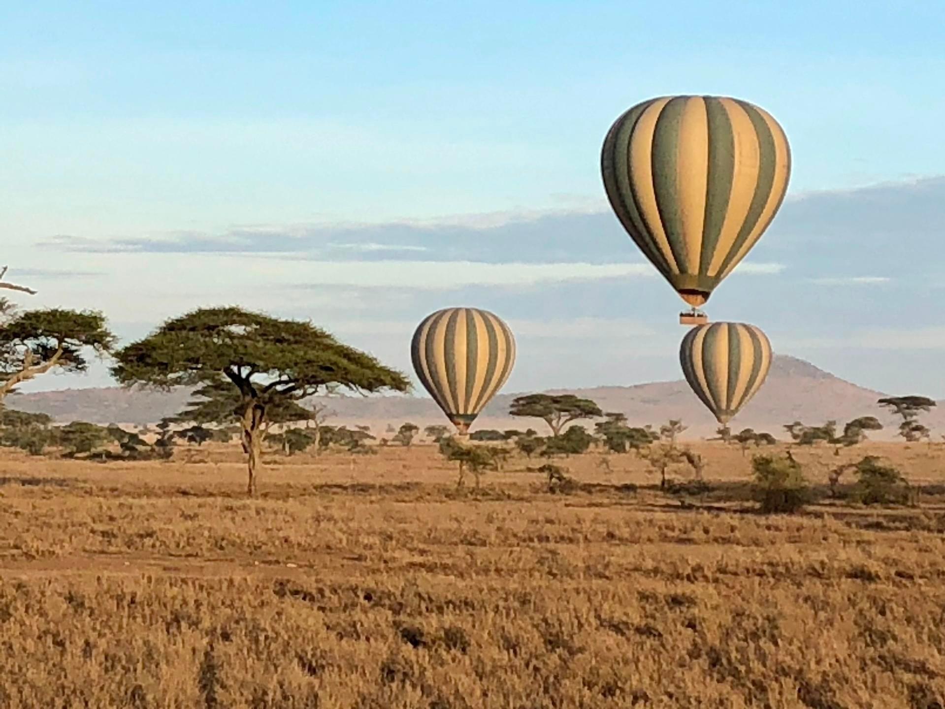 hot air balloons over the Serengeti
