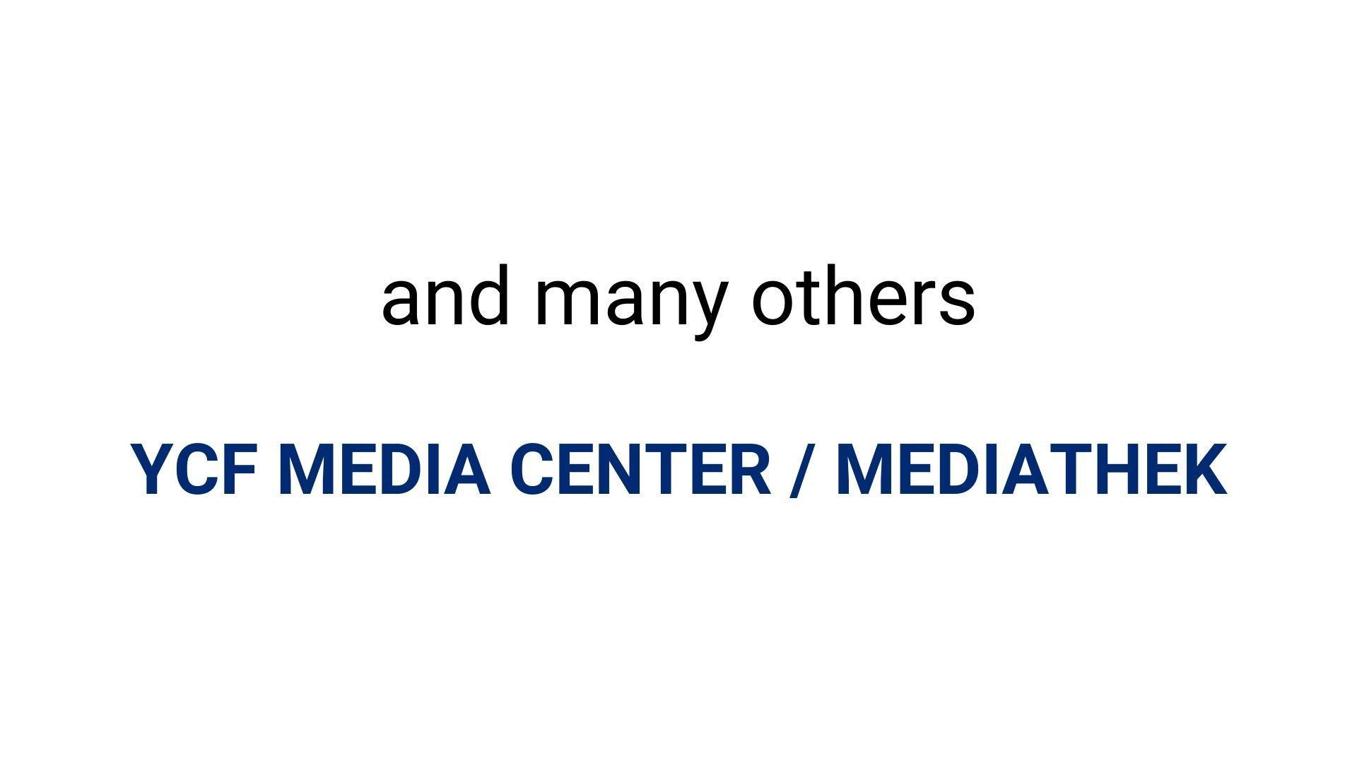 YCF Selbstverteidigung Online und Offline