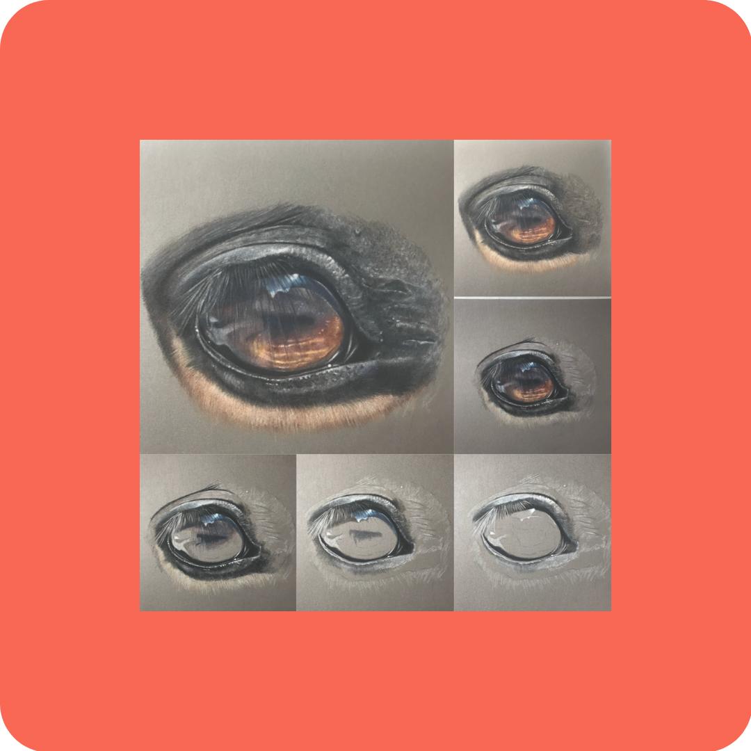 Eyes - Patreon - Free Resources - Bonny Snowdon Fine Art