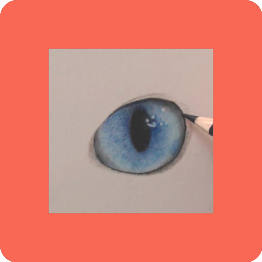 Eyes Workshop - Patreon - Free Resources - Bonny Snowdon Fine Art