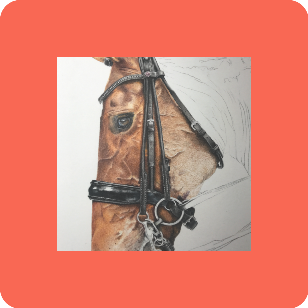 Leather - Patreon - Free Resources - Bonny Snowdon Fine Art