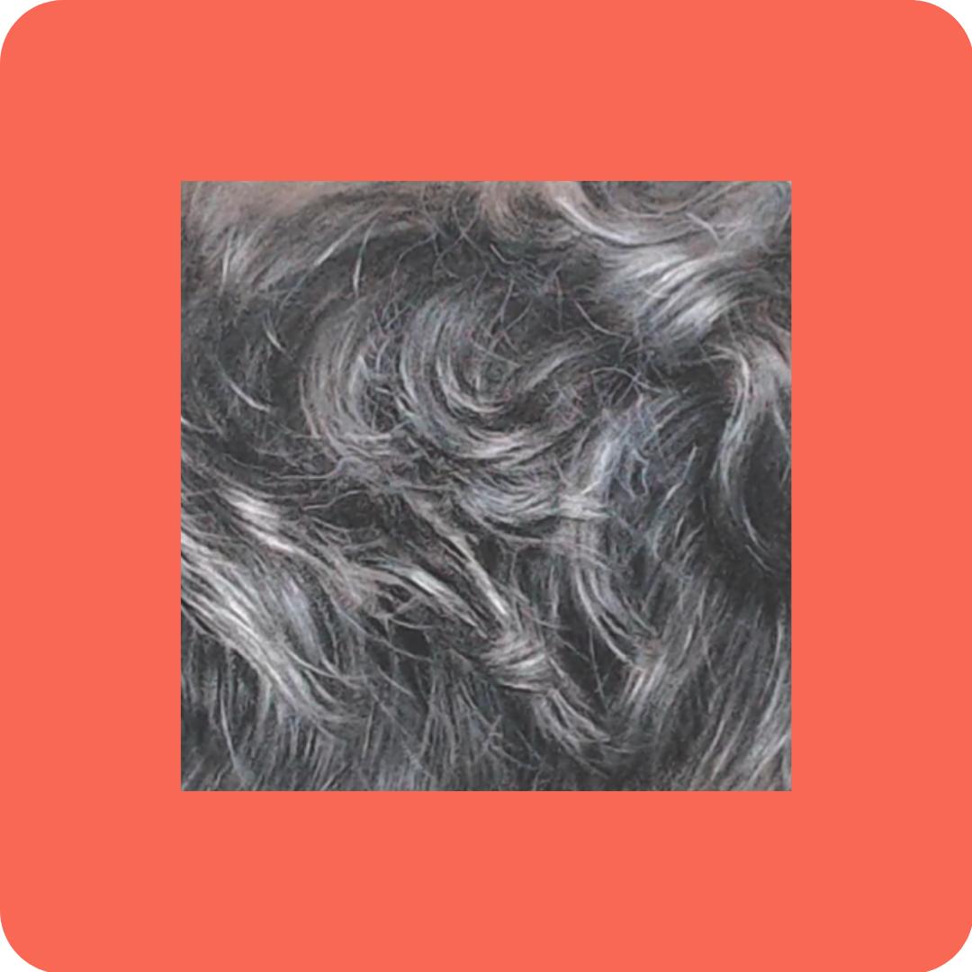 Wavy Fur - Patreon - Free Resources - Bonny Snowdon Fine Art