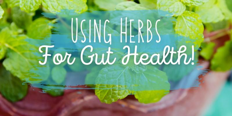 bowl of peppermint with the words 'Using Herbs for Gut Health'