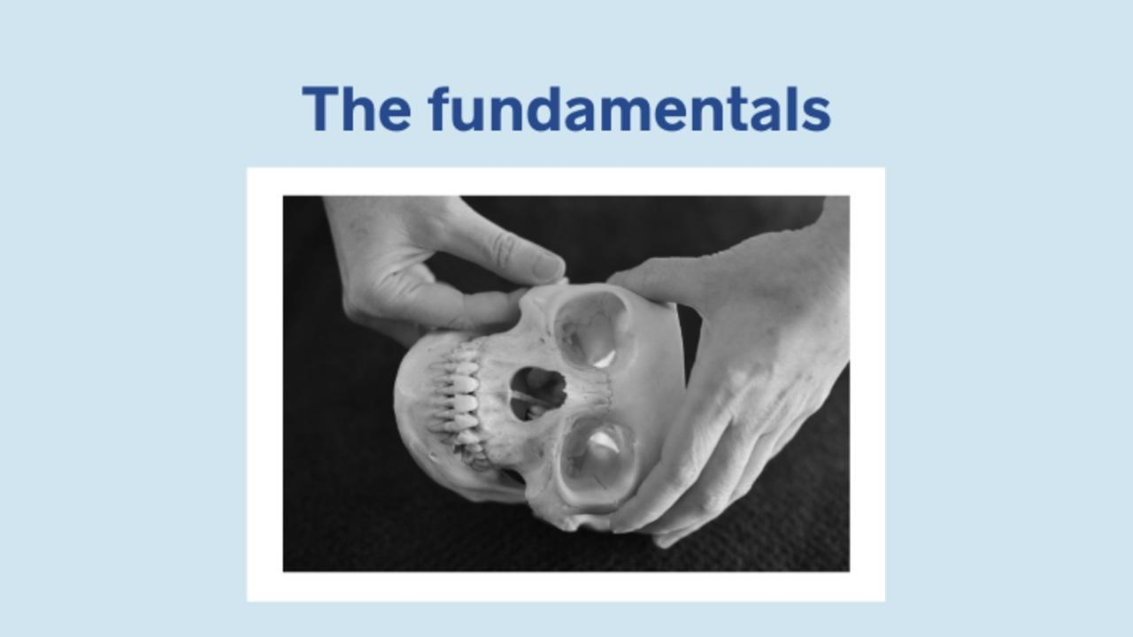 Image of an Osteopath demonstrating using a human skull