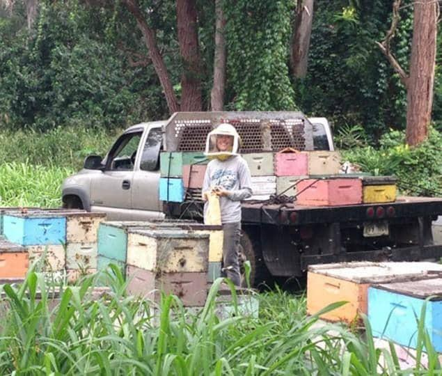 online beekeeping course instructor with beehives