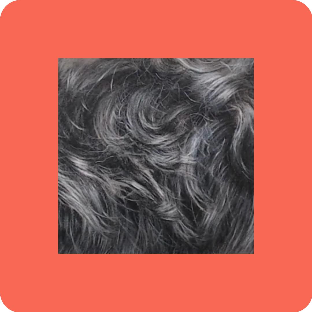 Black Fur - Tutorials to Get You Started - Patreon - Bonny Snowdon Fine Art