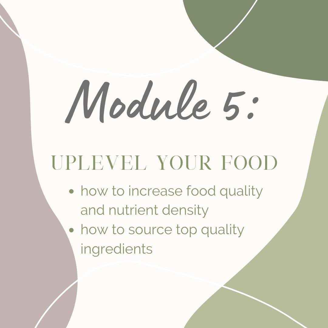 Module 5: Uplevel your food