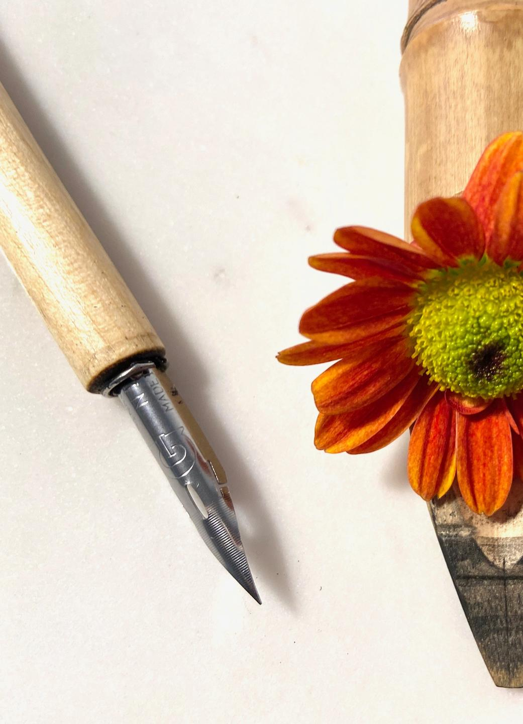 calligraphy pen and bamboo ink pen with orange zinnia