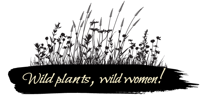 Wise Woman Studies with Corinna Wood, founder of Southeast Wise Women Herbal Conference and Red Moon Herbs