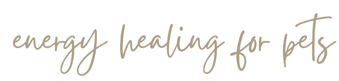 handwritten cursive words that say energy healing for pets