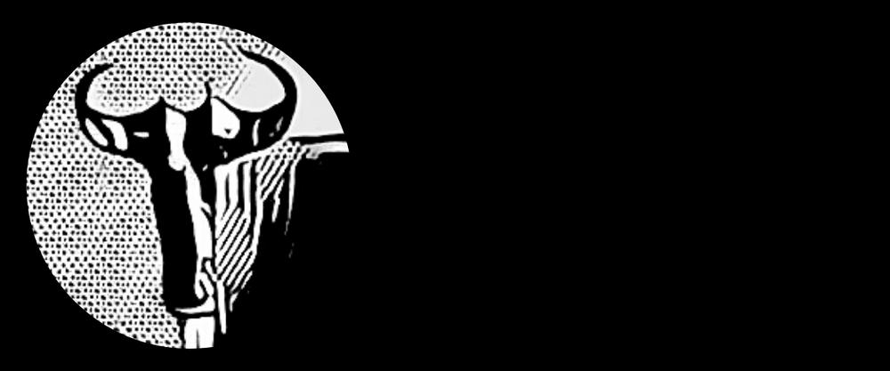 Wildebeest Publishing Logo