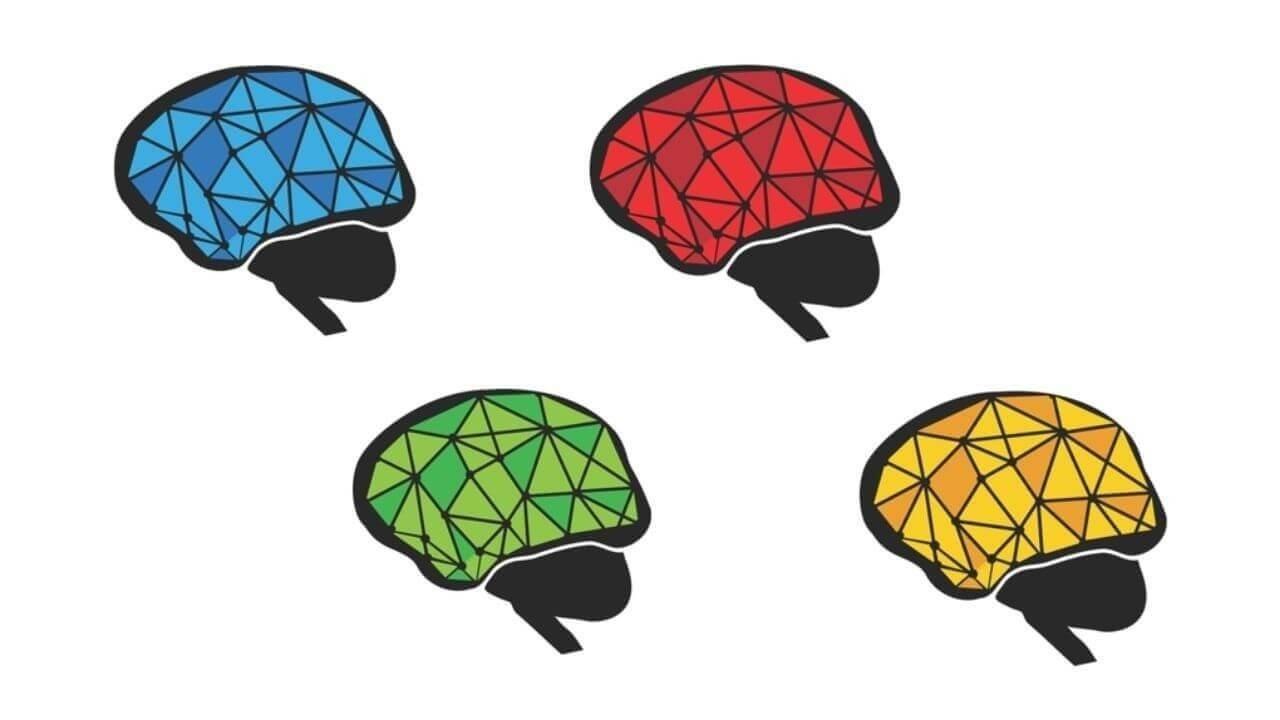Team Perfomance through NeuroScience - PeopleAtRightPlace