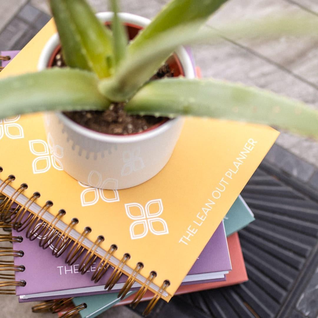 90 Day Lean Out Planner