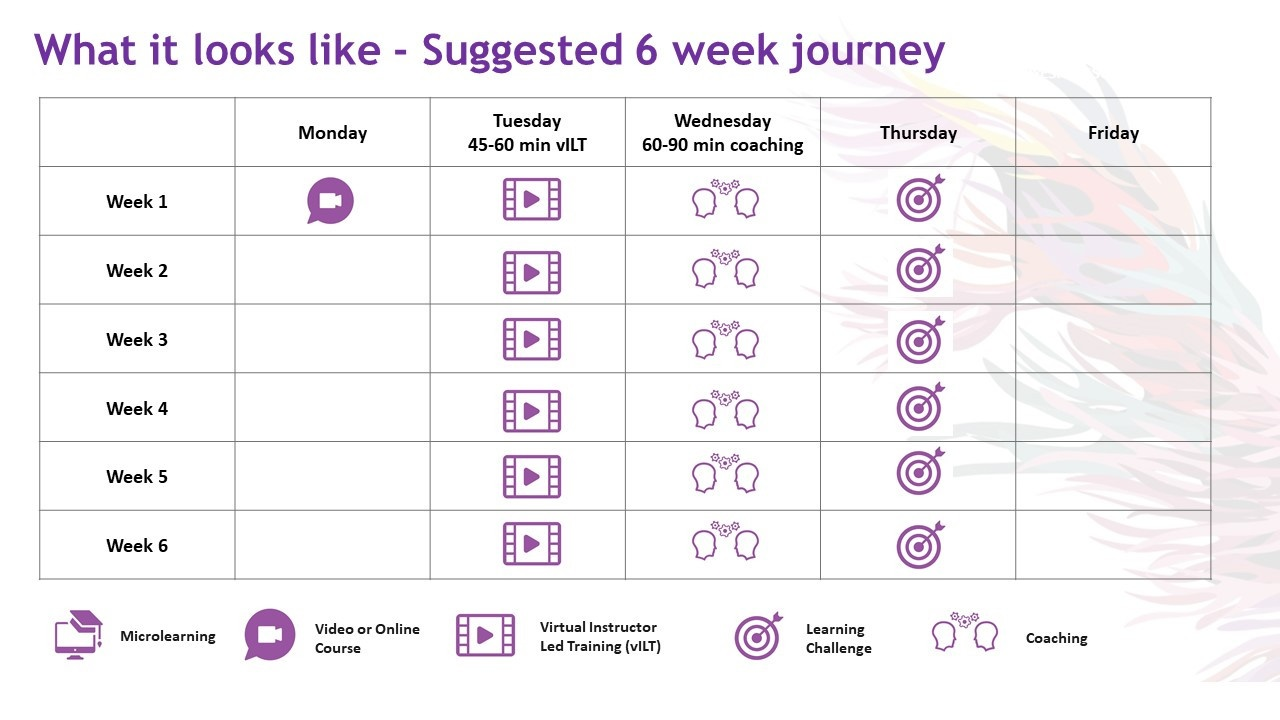 What it looks like - Suggested 6 week journey