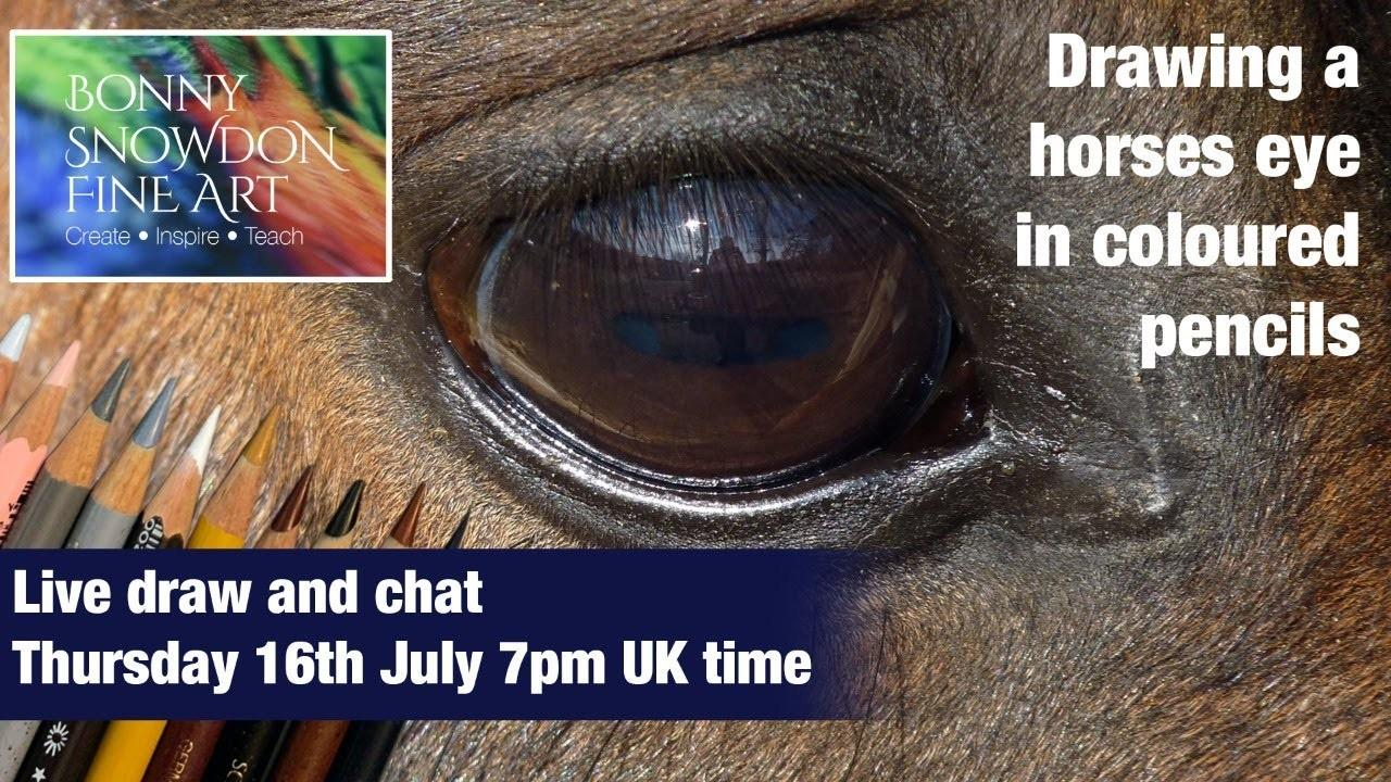 Horse Eye in Coloured Pencil - Live Draw Along and Chat - YouTube Library - Bonny Snowdon Fine Art