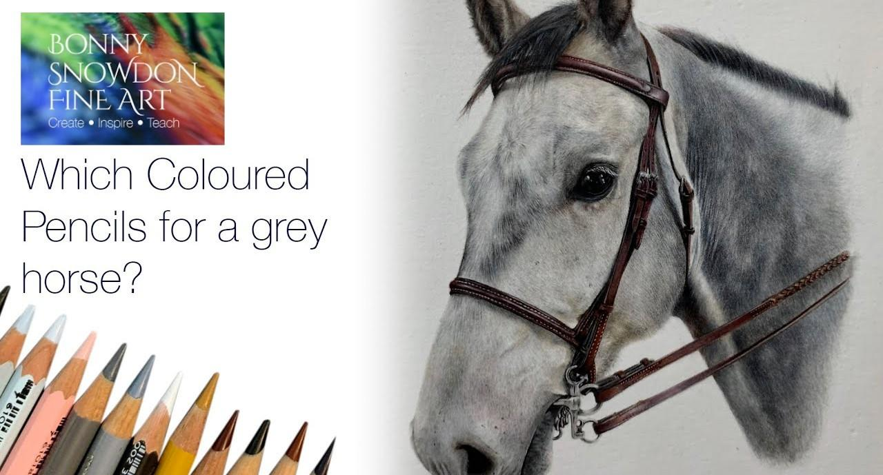 Which Coloured Pencils to Use for a Grey Horse - Live Draw Along and Chat - YouTube Library - Bonny Snowdon Fine Art