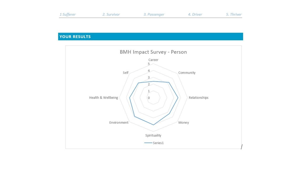 Impact Survey Report