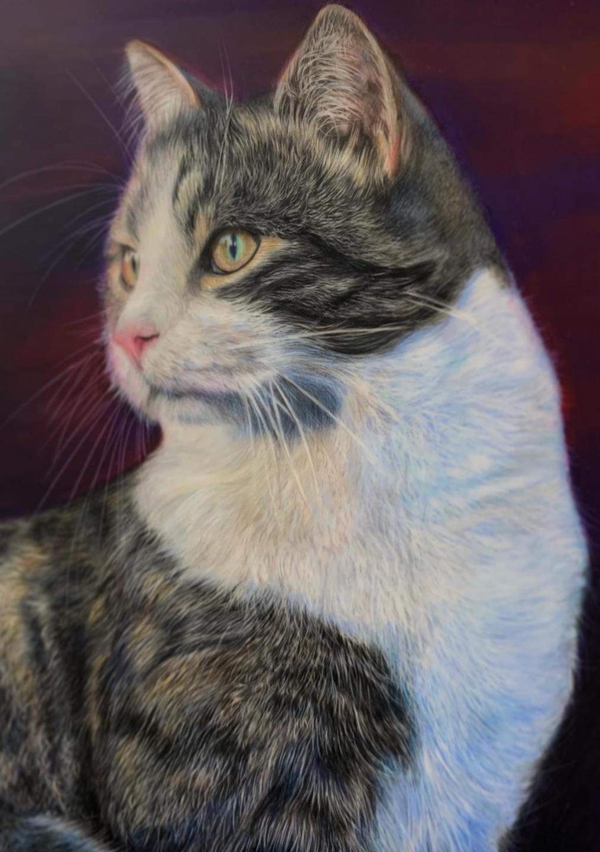 Milo - Patreon - Tutorial Gallery - Bonny Snowdon Fine Art