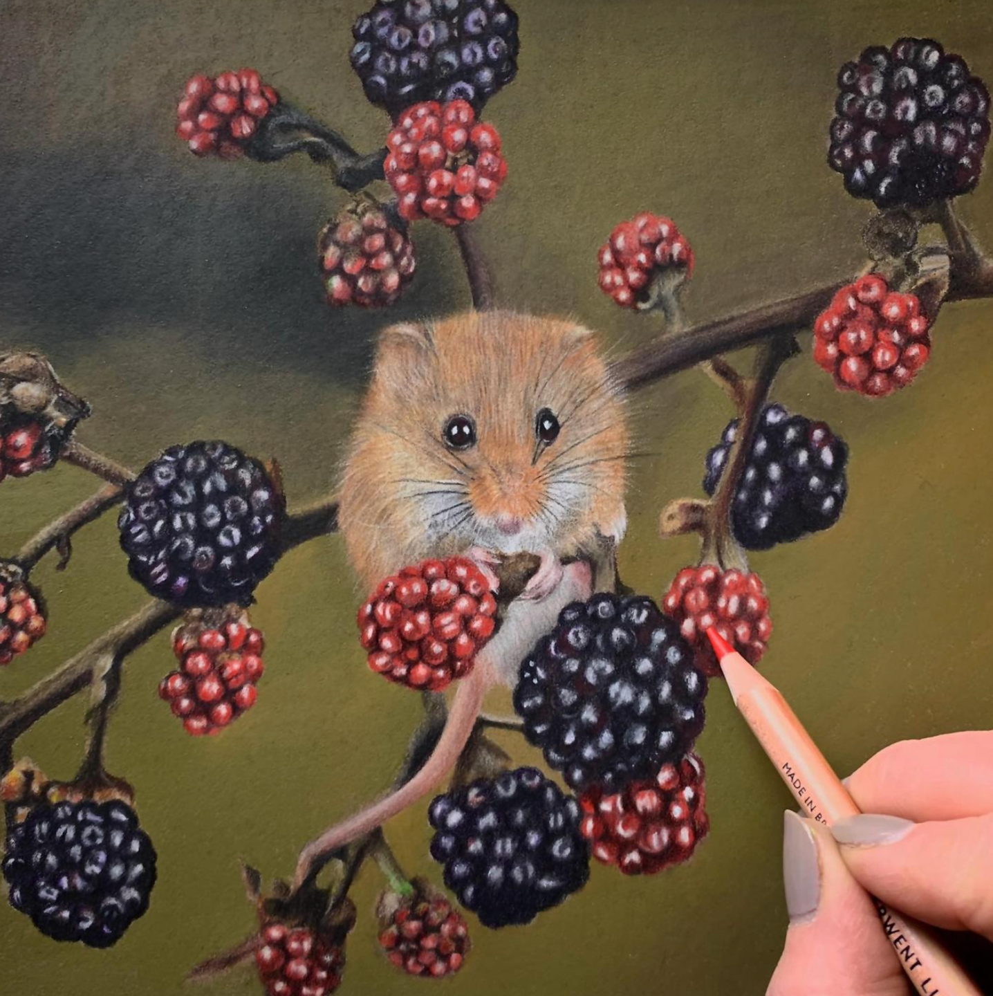 Spoilt for Choice -  Mouse - Patreon - Tutorial Gallery - Bonny Snowdon Fine Art